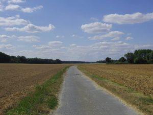 バルビゾン村外れの田園地帯